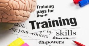Top Brain Training Programs