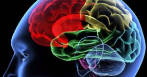 What Is A Brain Dump?